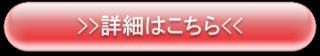 レッド詳細.png